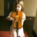 dixie violin